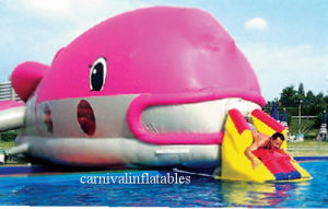 Inflatable Water Fish Obstacle / Inflatable Water Sport Game/ Inflatable Water Game