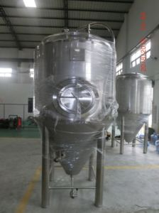 15bbl Stainless Steel Fermenter (MTB)