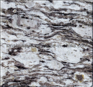 Discount Cheap White Oyster Granite Floor/Wall Tile for Sale