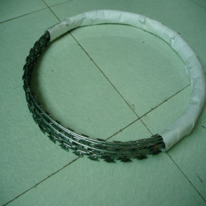 Concertina Razor Wire/Razor Barbed Wire /Razor Wire Fencing (HPZS-1004) pictures & photos