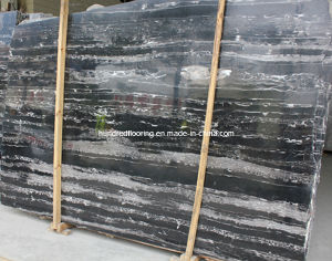 Chinese Black and White Marble Silver Dragon pictures & photos