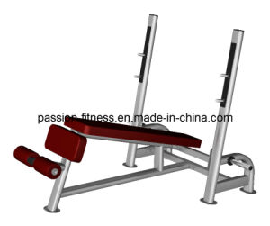 Olympic Bench Decline Press Free Weight Commercial Fitness/Gym Equipment with SGS