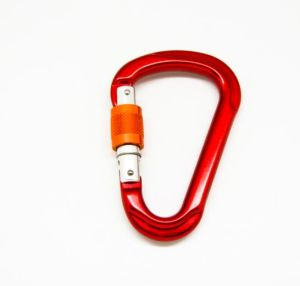 D Shaped Aluminum Climbing Carabiner Key Lock Carabiner pictures & photos