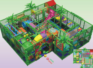 Indoor Playground (2011-148D) pictures & photos