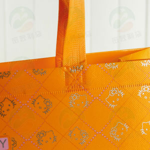 Auto-Forming PS Coating Can Hold 20kg Recycable Non Woven Bag 34.30.11 (MY-075) pictures & photos