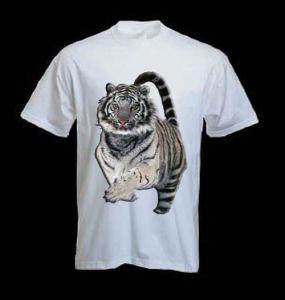 T-Shirt (CDT-1301CD)