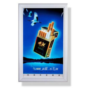 High Quality Light Box for Display (HS-LB-004) pictures & photos
