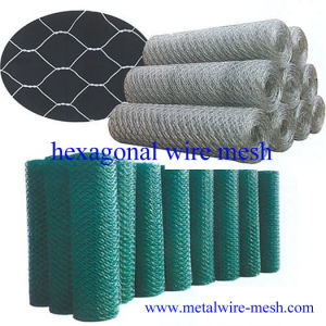 Hexagonal Wire Mesh/Netting 0.6mmx1/2′′ pictures & photos