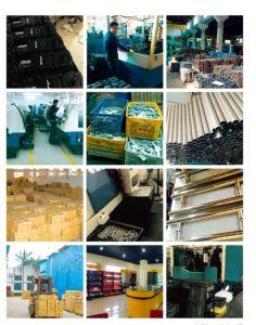 High Quality Stainless Steel Floor Door Hinge /Td-75 pictures & photos