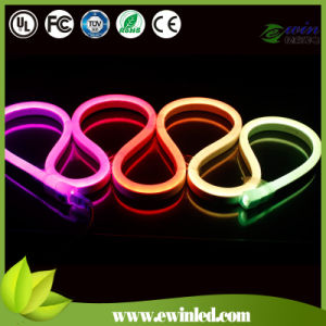 2 Wires 12V Single Color LED Lighting Neon with CE&RoHS pictures & photos