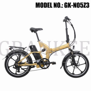 Wheel Motor Electric Bicycle with TUV En15194 pictures & photos