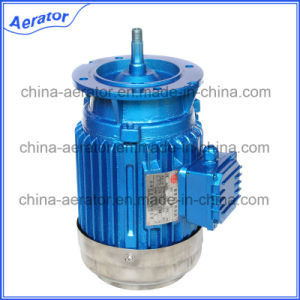3 Phase Motor 1.5kw AC Motor for Paddle Wheel Aerator