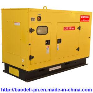 Silent Heavy Duty Diesel Generator (BU30KS) pictures & photos