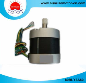 80bly3a80 36V 3000rpm DC Motor Electric Motor Brushless DC Motor pictures & photos