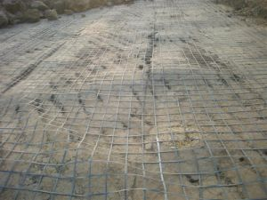 Soil Reinforcement PP Biaxial Geogrid Bx1100 Bx1200 Bx1300 pictures & photos
