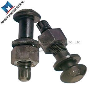 ASTM A325 Tension Control Bolt for Steel Structure M30 pictures & photos