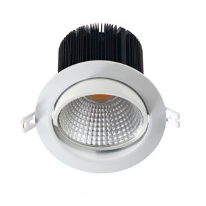 Waterproof LED Downlight with an Outdoor LED Driver pictures & photos