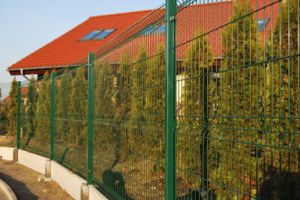 Security Fence with High Quality (ISO9001 and SGS) pictures & photos
