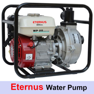Factory Electric Pump Set (WP30) pictures & photos