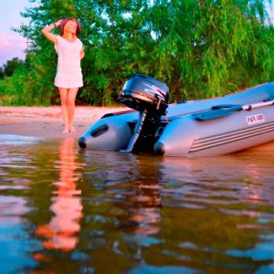 6HP 4-Stroke Outboard Motor pictures & photos