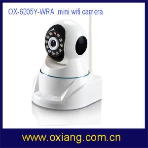 Network IP Mini Wireless Camera pictures & photos