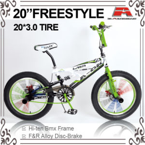 Disc Brake 20 Inch Big Tire Freestyle BMX Bike (ABS-2054S) pictures & photos