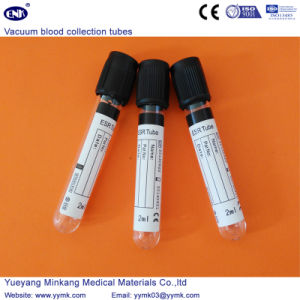 Vacuum Blood Collection Tubes ESR Tube (ENK-CXG-040) pictures & photos