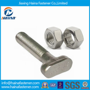 Bolts and Fasteners Stainless Steeel T Head Bolt with Nut pictures & photos