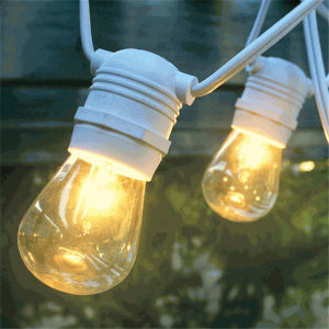 48 FT Black Commercial Medium Suspended 15PCS 20PCS E26 Sockets 11W S14 Vintage Bulb String Light pictures & photos