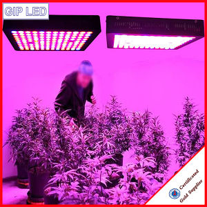 Best 600W Full Spectrum LED Grow Lights with Veg/Bloom pictures & photos