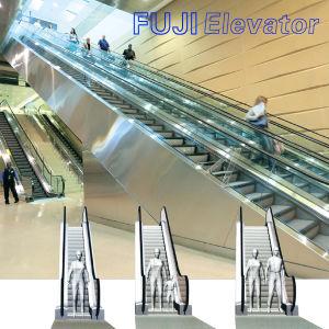 FUJI Heavy Duty Public Transport Escalator pictures & photos