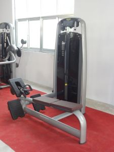 Commercial Gym Machine / Fitness Equipmet / Tz-6021 Low Row pictures & photos
