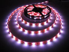 SMD 5050 Strip Light LED Strip LED Lighting LED pictures & photos