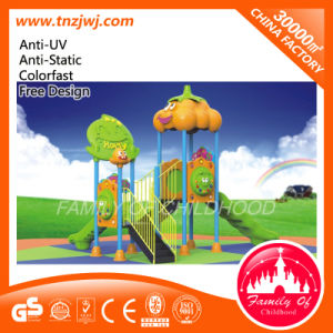 Outdoor &Indoor Natural Playground Kids Slide Playground pictures & photos