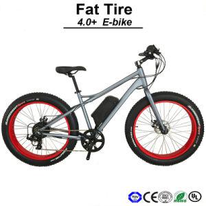 Snow Bike Electric Mountain Bike (TDE12Z) pictures & photos