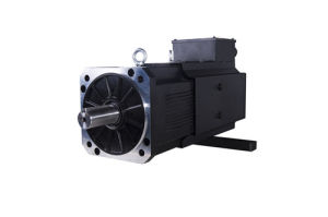 AC Permanent Magnet Synchronous Servo Motor 200mm pictures & photos