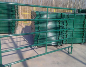 Black Powder Coating 5foot*10foot American Livestock Panel/Horse Corral Panel pictures & photos