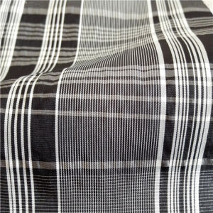 40d 300t Water & Wind-Resistant Down Jacket Woven Dobby Plaid Jacquard 33% Polyester 67% Nylon Blend-Weaving Intertexture Fabric (H028) pictures & photos