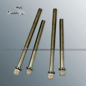 M3-M40 Non Standard Customized Special Fastener, Special Screw (FB025)