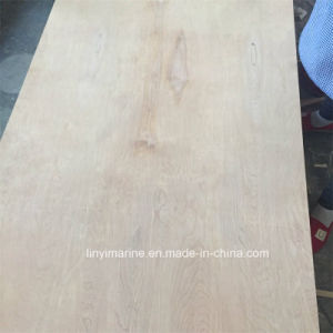 White Birch and Natural Birch Plywood for Packing Usage pictures & photos