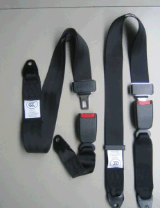 2 Point Safety Seat Belt for Car/Bus pictures & photos