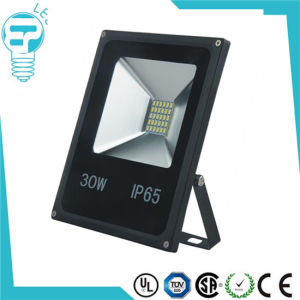 New Product 2016 CE RoHS 30W SMD Floodlight pictures & photos