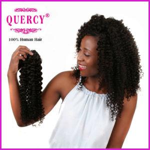 Quercy Hair Kinky Curl Brazilian Hair Weave 100% Virgin Remy Human Hair Virgin Brazilian Kinky Curly Hair pictures & photos