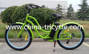 250W Brushless Rear Motor for Electric Bike (SP- EB-08) pictures & photos