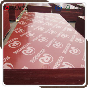 Construction Film Faced Waterproof 18mm Marine Plex Plywood pictures & photos