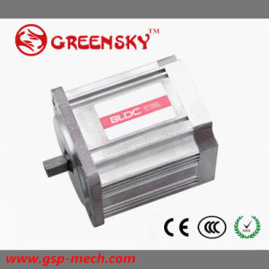Hot in Japan 12V 24V High Torque Brushless DC Gear Motor pictures & photos