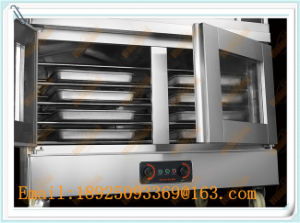 Electric Fermentation with Baking Oven (204DF) pictures & photos