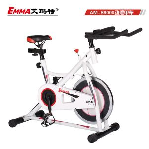 Light Style Body Fit Spin Bike (S9000W) pictures & photos
