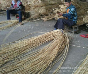 Bamboo Rattan Stick Manufactory pictures & photos
