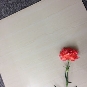Flowers Polished Wall and Floor Tile pictures & photos